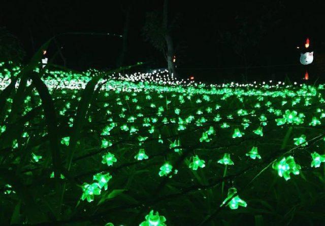 Taman Lampion Kaliurang Terancam Rusak Akibat Ulah Pengunjung