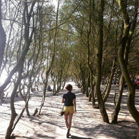 Pantai Baru, Salah Satu Objek Wisata yang Paling Dicari