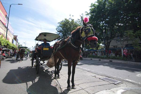Horeee, Pengemudi Andong dan Becak di Jogja Disyaratkan Miliki SIM